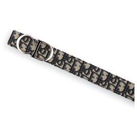 Dior-Dior belt new-Beige