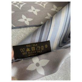 Louis Vuitton-Foulards de soie-Gris