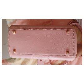 Delvaux-Brilliant mini-Pink