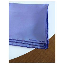 Hermès-Magnifique foulard en soie-Bleu