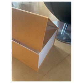 Louis Vuitton-Misc-Light brown