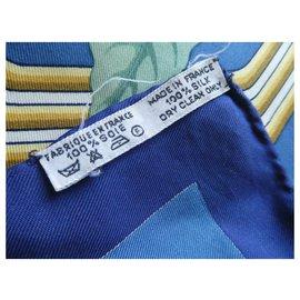 Hermès-vintage hermès square the parrots by j.put with box-Blue