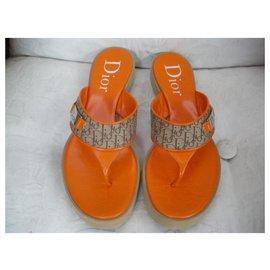 Dior-Mules-Multicolore